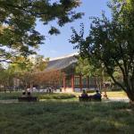 대구 국채보상로 공원